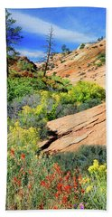 Zion Slickrock Beach Sheet