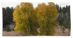 Aspen Trees In The Fall Co Beach Towel
