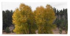 Aspen Trees In The Fall Co Beach Sheet