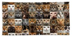 Beach Towel featuring the photograph 100 Cat Faces by Sergey Taran