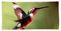 103456 - Ruby-throated Hummingbird Beach Sheet by Travis Truelove