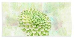 10891 Green Chrysanthemum Beach Towel by Pamela Williams