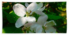 Apple Blossoms Beach Towel