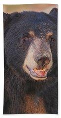 Black Bear  Beach Towel
