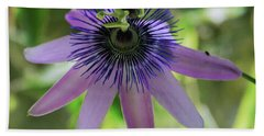 Purple Passiflora Beach Towel by Elvira Ladocki