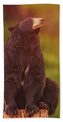 Black Bear Beach Towel