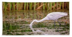White, Great Egret Beach Towel