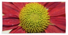 Red Flower Beach Towel by Elvira Ladocki