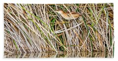 Beach Towel featuring the photograph Least Bittern by Tam Ryan