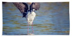 Black-necked Stilt  Beach Towel by Tam Ryan