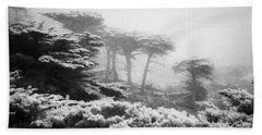 17 Mile Drive Cyprus Tress  Beach Towel