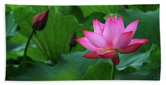 Blossoming Lotus Flower Closeup Beach Sheet