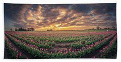 Beach Towel featuring the photograph 180 Degree View Of Sunrise Over Tulip Field by William Lee