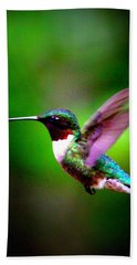 1846-007 - Ruby-throated Hummingbird Beach Sheet by Travis Truelove