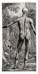 18th Century Anatomical Engraving Beach Sheet