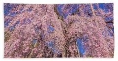 Beach Sheet featuring the photograph Miharu Takizakura Weeping Cherry20 by Tatsuya Atarashi
