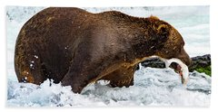 Alaska Brown Bear Beach Towel