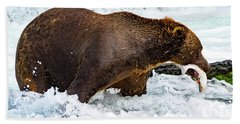 Alaska Brown Bear Beach Sheet