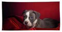 American Pitbull Puppy Beach Towel