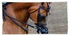 Arabian Show Horse Beach Towel
