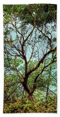 Arbutus Tree Beach Towel