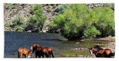 Arizona Wild Horses Beach Towel