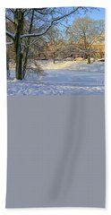 Beautiful Park In Winter With Snow Beach Towel