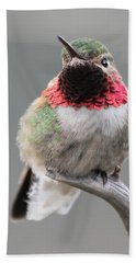 Beach Towel featuring the photograph Broad-tailed Hummingbird by Shane Bechler