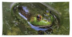 Bullfrog Stony Brook New York Beach Towel