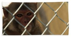 Caged Monkey Beach Towel