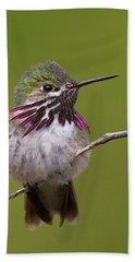 Calliope Hummingbird Beach Towel
