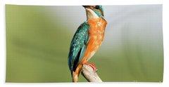 Common Kingfisher Alcedo Atthis Beach Towel