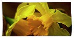2 Daffodils Beach Towel by John Harding