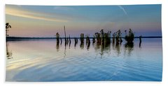 Beach Towel featuring the photograph Dismal Swamp 2016 by Kevin Blackburn