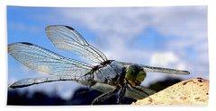 Dragonfly On A Mushroom 001  Beach Towel