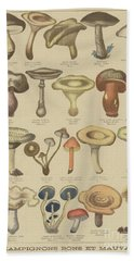 Edible And Poisonous Mushrooms Beach Sheet by French School