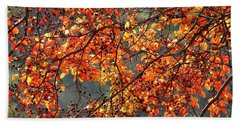 Beach Towel featuring the photograph Fall Leaves by Nicholas Burningham