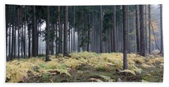 Fog In The Forest With Ferns Beach Towel by Michal Boubin