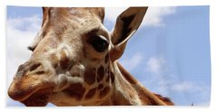 Giraffe Getting Personal 6 Beach Towel