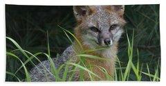 Gray Fox In The Grass Beach Towel