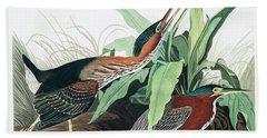 Green Heron Beach Towel