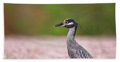 Green Heron Beach Sheet