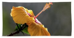 Hibiscus In Bloom Beach Sheet by Pravine Chester