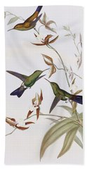 Hummingbirds Beach Towel by John Gould