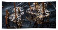 Ice Art Beach Sheet