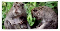 Long Tailed Macaques  Beach Sheet by Cassandra Buckley