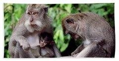 Long Tailed Macaques  Beach Sheet