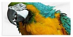Macaw Bird Beach Towel