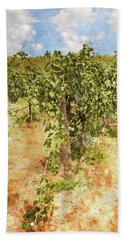 Napa Vineyard In The Spring Beach Sheet