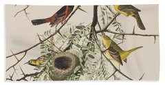 Orchard Oriole Beach Sheet by John James Audubon